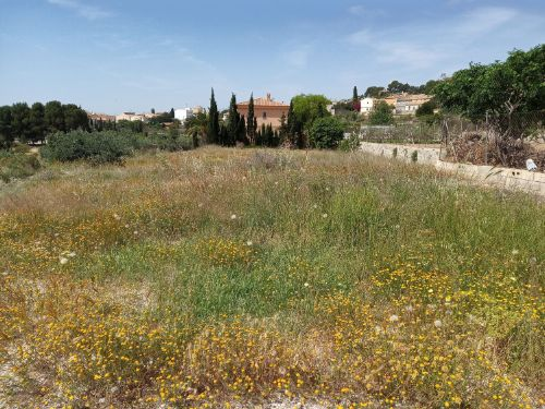 Land / Undeveloped in Sale