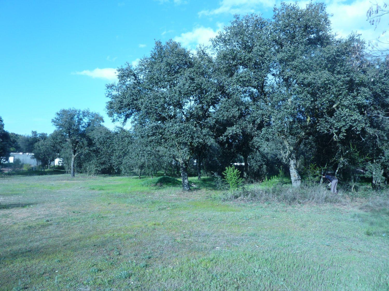 Terreno en venta en Área de la Sierra de San Vicente, Toledo 4 thumbnail
