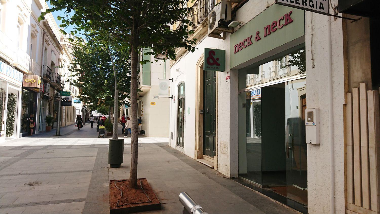 locales-comerciales en almeria · centro 950€