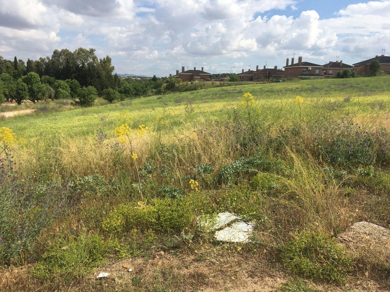 Terreno Urbanizable En Venta Avda Europa San Anton Toledo