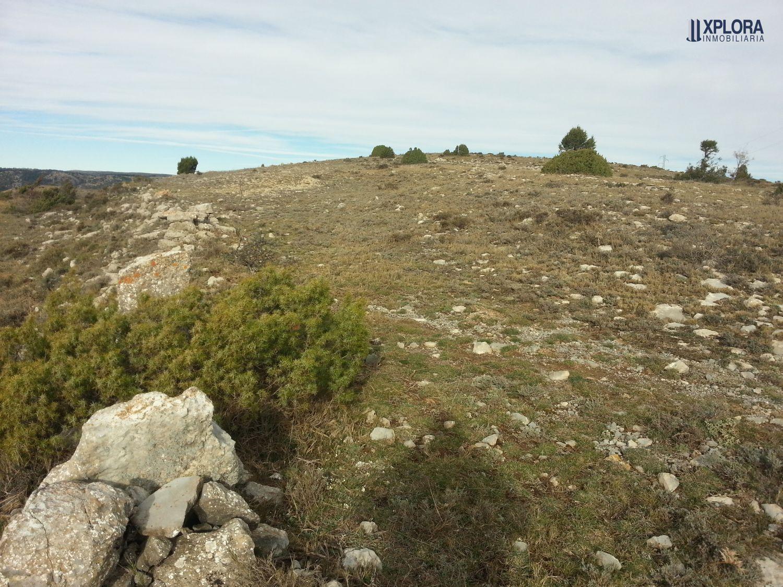 Terreno No Urbanizable En Venta Las Callejuelas S N El Castellar