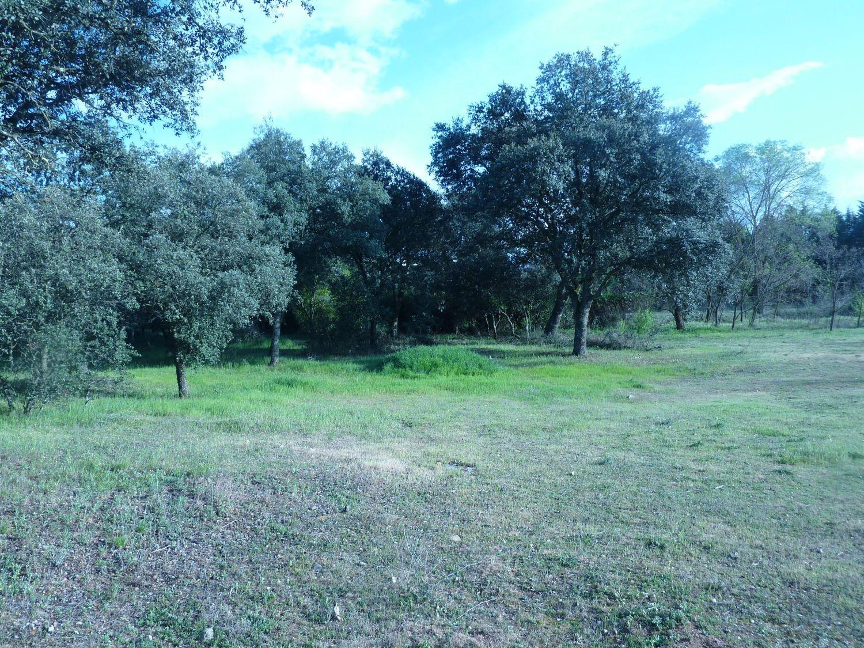 Terreno en venta en Área de la Sierra de San Vicente, Toledo 7 thumbnail