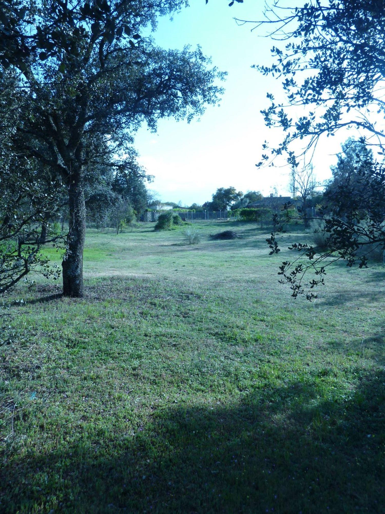 Terreno en venta en Área de la Sierra de San Vicente, Toledo 9 thumbnail