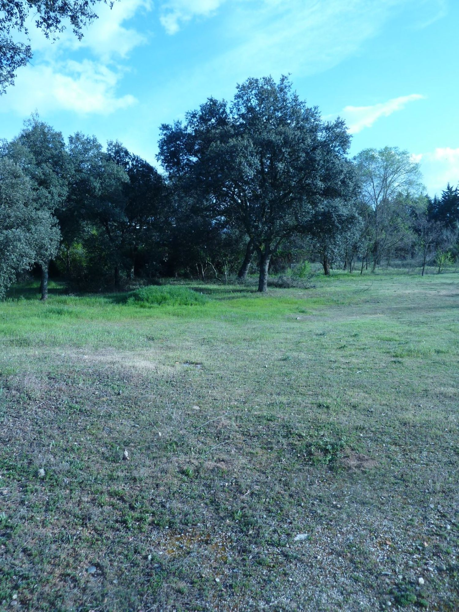 Terreno en venta en Área de la Sierra de San Vicente, Toledo 3 thumbnail