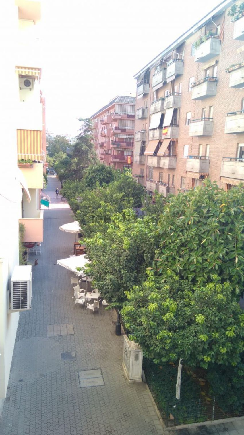 Piso en calle atanasio barrón, San Bernardo-Buhaira-Huerta del Rey, Sevilla