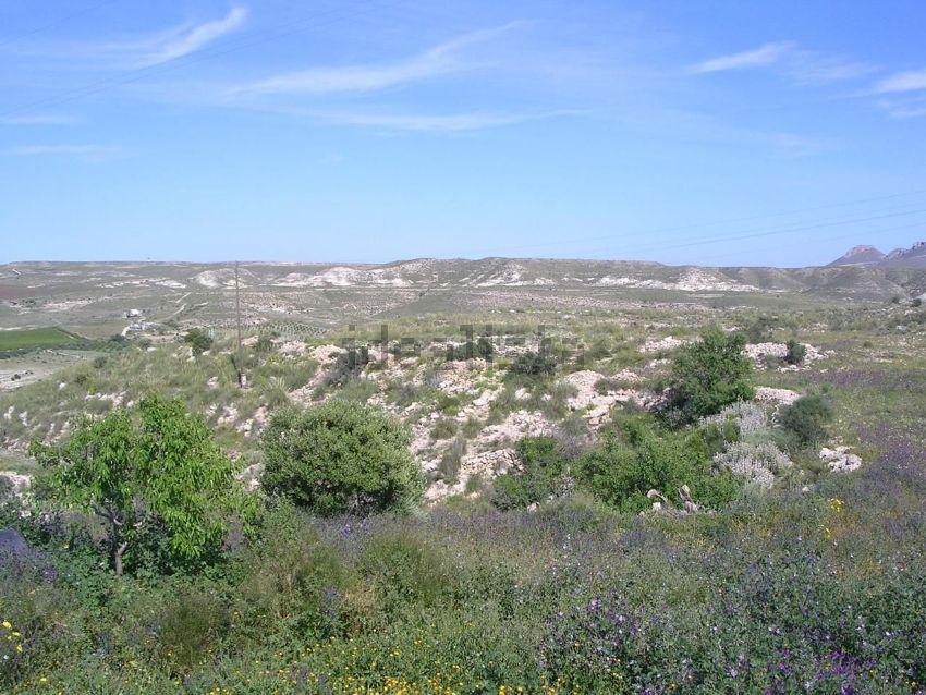 Finca rústica en carretera carboneras, Aguamarga, Nijar