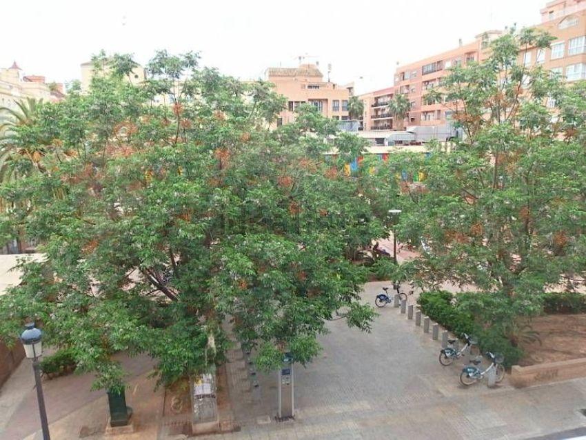 Piso en plaza de sant felip neri, Albors, València