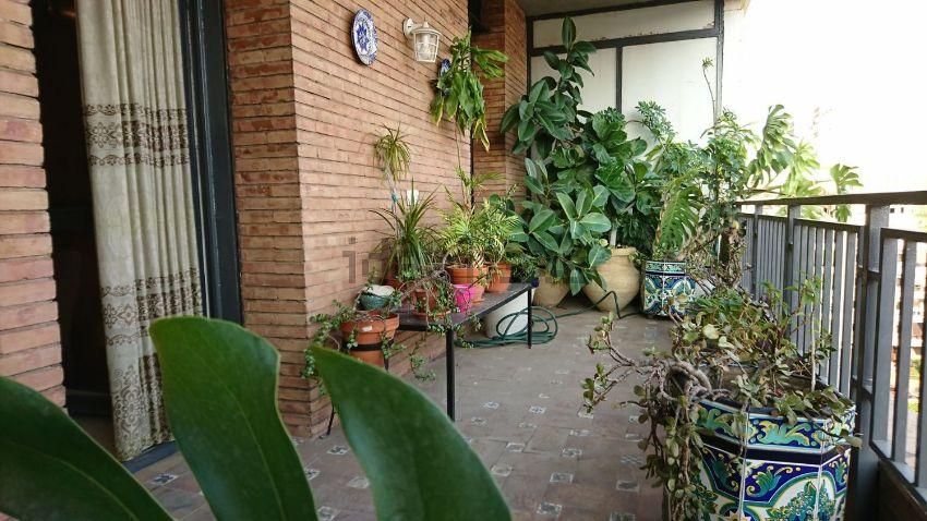 Piso en avenida Flota de Indias, 12, Tablada-Ramón de Carranza-Madre Rafols, Sev
