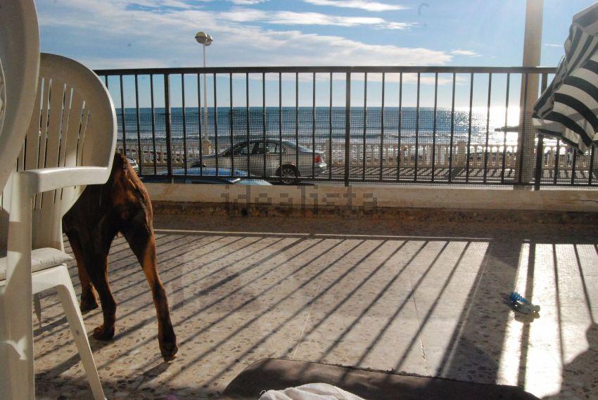 Piso en avenida Doctor Mariano Ruiz Canovas, 17, Playa de los Locos, Torrevieja