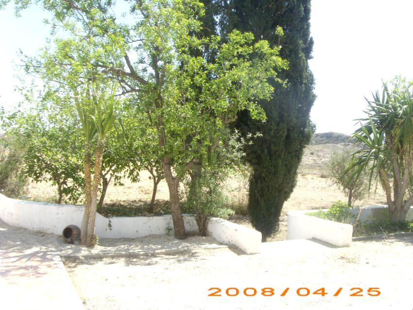 Casa o chalet independiente en calle Partida Pozoblanco, 48, Monforte del Cid
