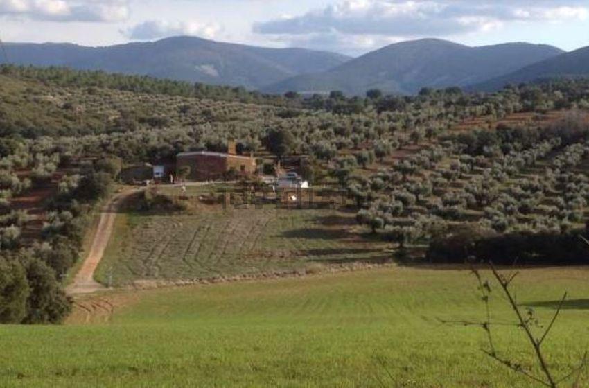 Casa rural en carretera CM-401, 58, Los Navalmorales