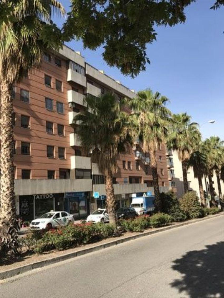 Piso en periodista Eugenio Selles, s n, Barrio de los Periodistas, Granada