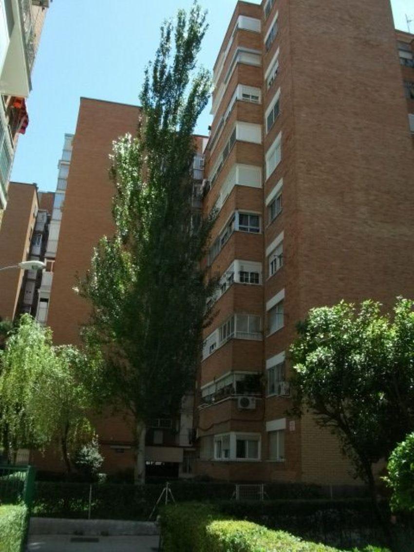 Piso en calle Sierra de Alto León, Zona Centro Joven, Alcorcón