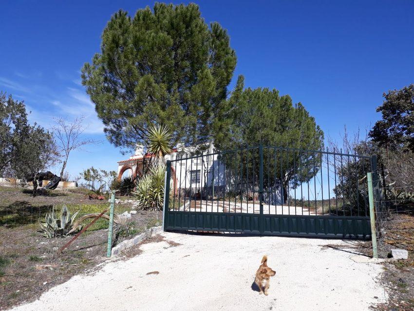 Casa o chalet independiente en carretera de la canaleja, Añora