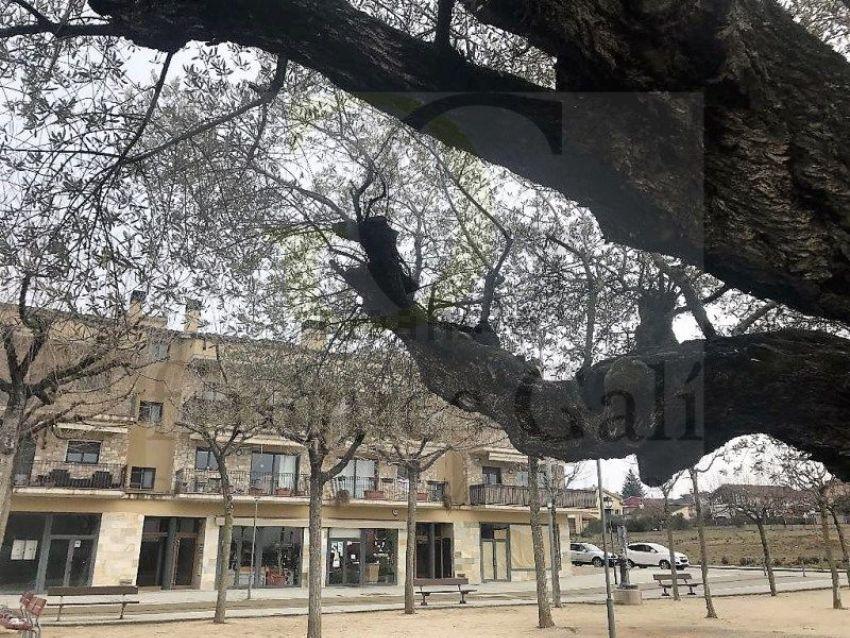 Piso en Solsonès, Lleida