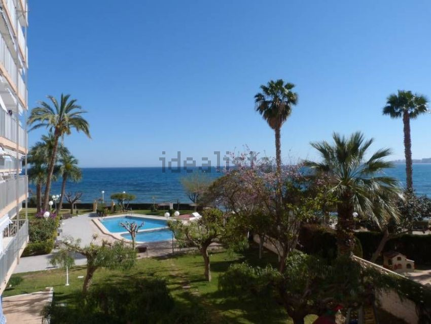 Piso en Av Jaime 1 conquistador, Playa Muchavista, El Campello