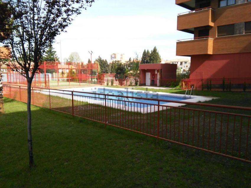 Piso en avenida DELA ILUSTRACION, Campus de la Salud, Granada