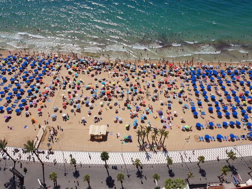 Piso en avenida Alcoi, Playa de Levante, Benidorm