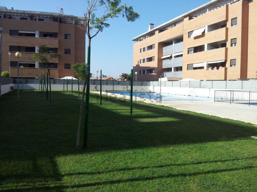 Piso en calle sócrates, Nuevo Bulevar, Mairena del Aljarafe