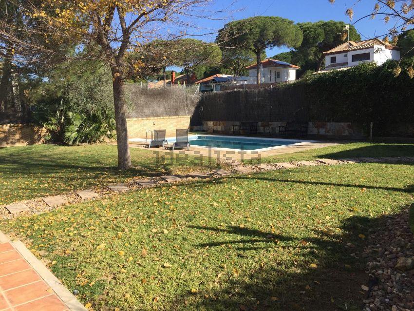 Casa o chalet independiente en Cedro, urbanizacion la Juliana, 39, Bollullos de