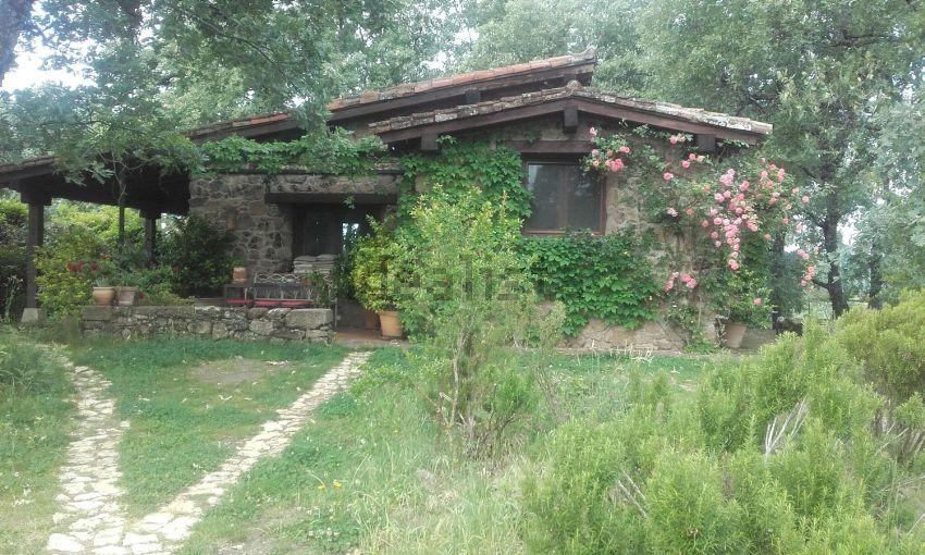 Finca rústica en Las planas, s n, Villanueva de la Vera
