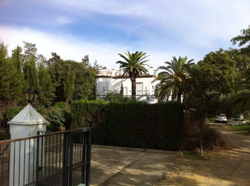 Finca rústica en Aljarafe, Sevilla