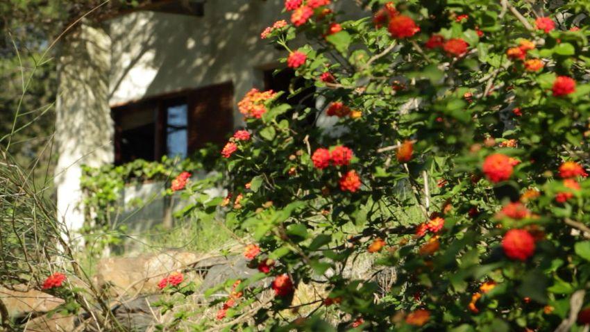 Casa rural en camino Montes, 1, Villablanca