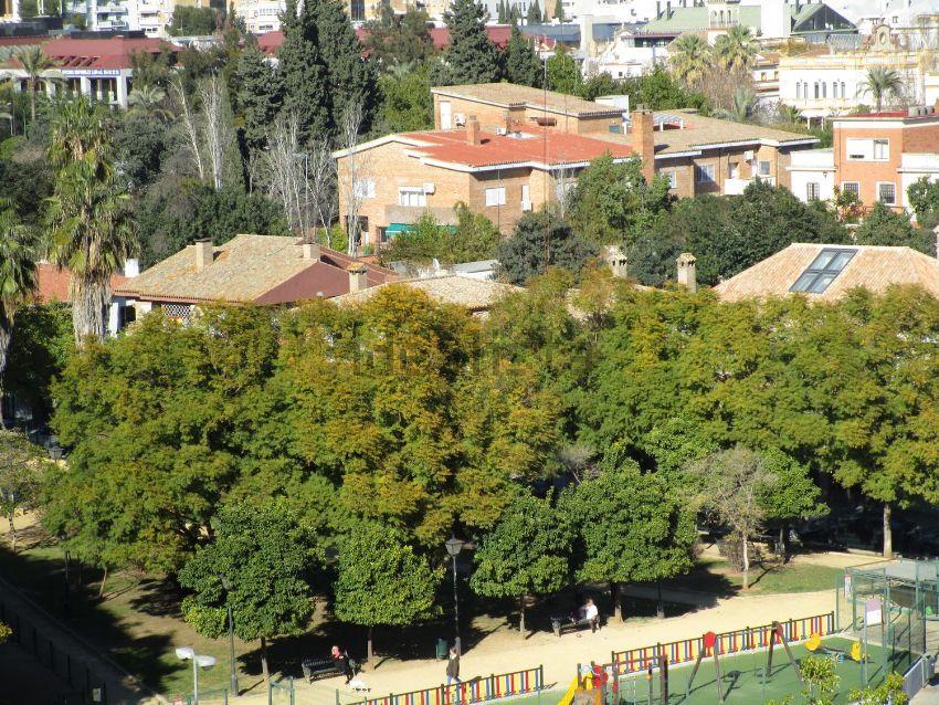 Piso en avenida Reina Mercedes, Reina Mercedes - Heliópolis, Sevilla