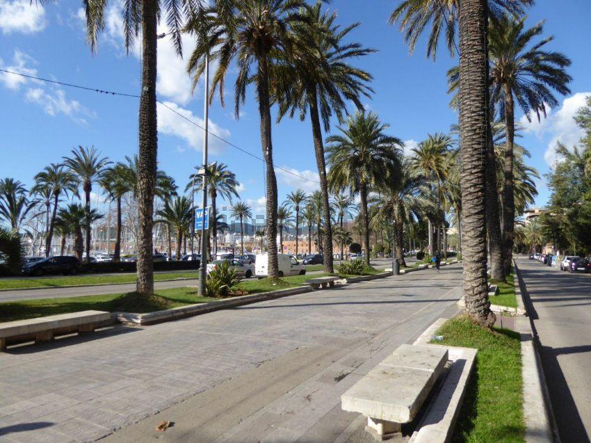 Piso en Ciutat Antigua, Palma de Mallorca