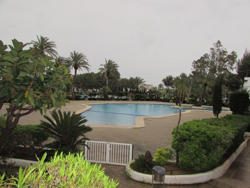 Estudio en Port d Alcúdia - Platja d Alcúdia, Alcúdia