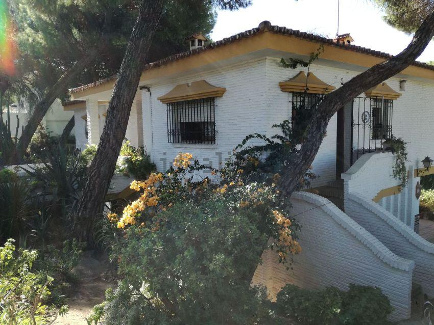 Casa o chalet independiente en calle Pino Negral, 18, Oromana, Alcalá de Guadair