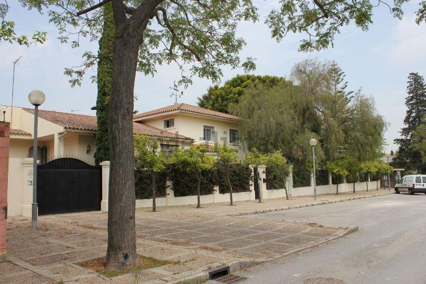 Casa o chalet independiente en Avenida del pinar, Montealto, Jerez de la Fronter