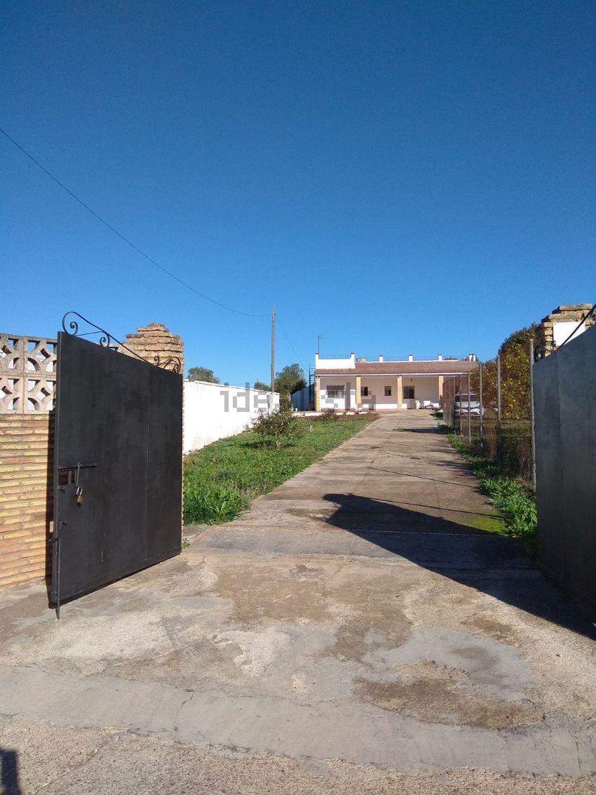 Casa o chalet independiente en Nuevo Bulevar, Mairena del Aljarafe