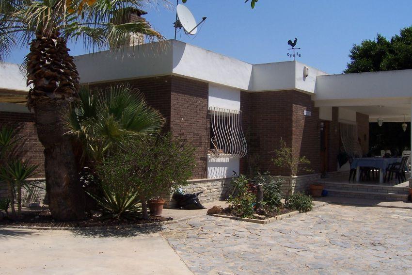Casa o chalet independiente en camino Partida Valverde, 203, Valverde, Elche Elx