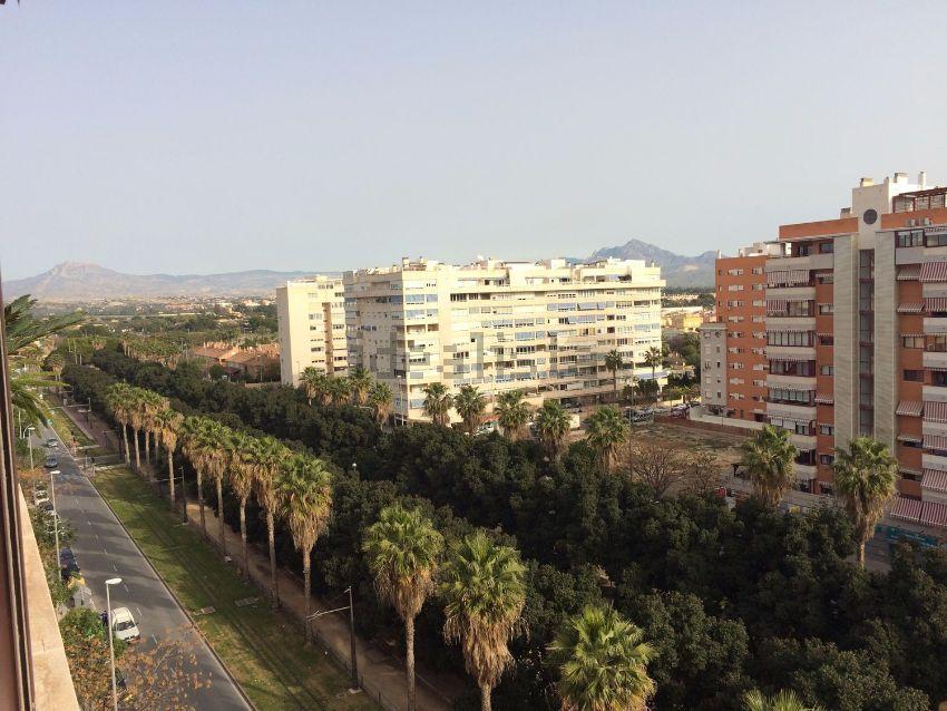 Piso en avenida Esportista Miriam Blasco, 7, La Albufereta, Alicante Alacant
