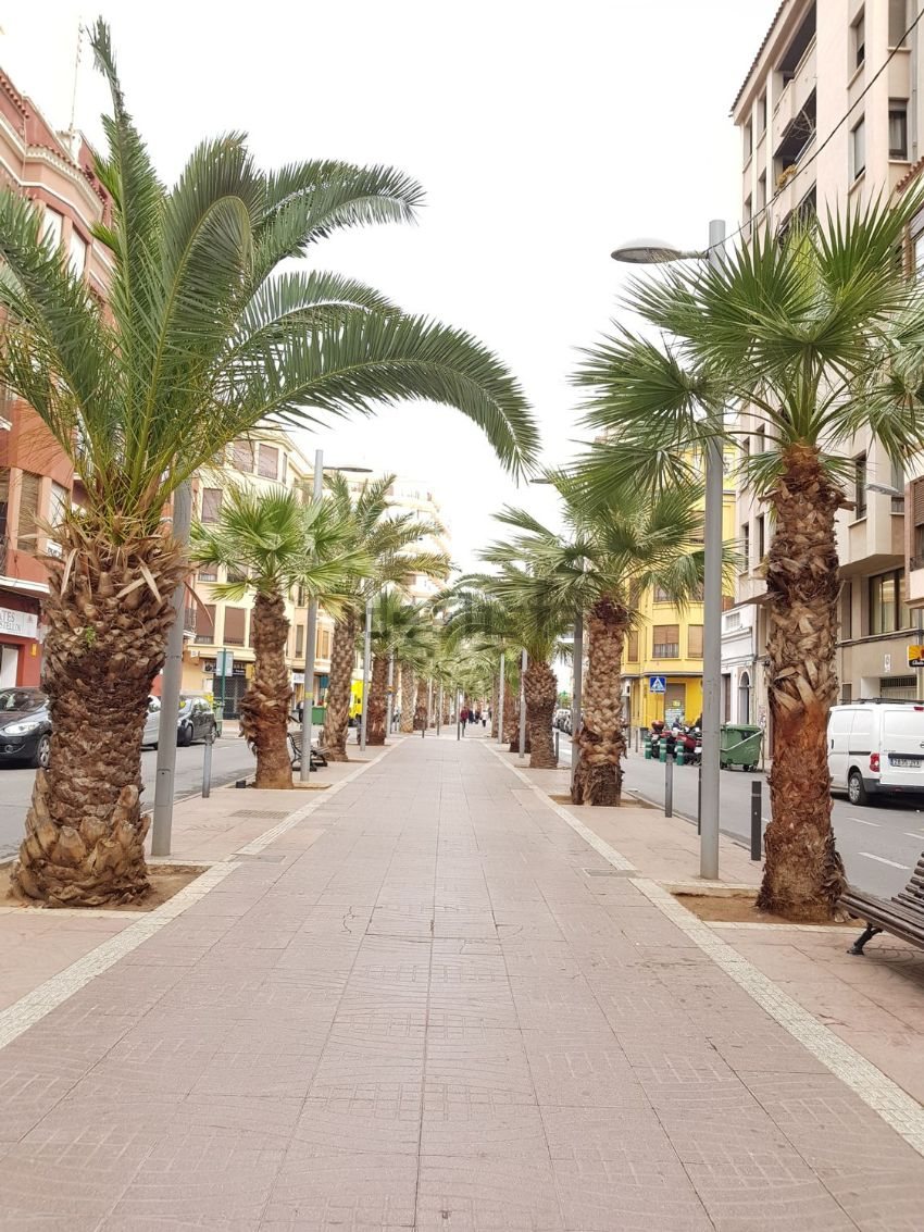 Piso en CAPUCHINOS, Zona Plaza Illes Columbretes, Castellón de la Plana Castello