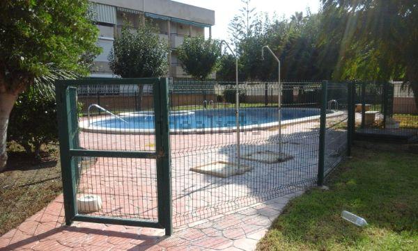 imagen piscina de piso en avenida de italia mil palmeras