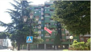 Piso en calle Arturo Álvarez Buylla, 1