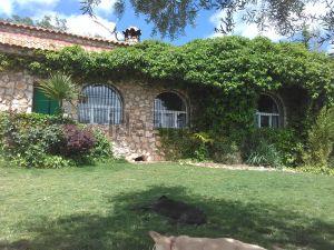 Casa independiente en calle Fuente de la Reina, 215