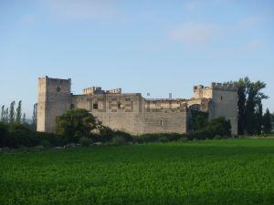 Castillo en Merindad de Rio Ubierna