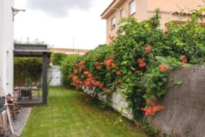 Casa independiente en Urb. junto colegio de san patricio - lloma del mas - bétera La Conarda-Montesano