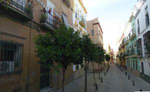 Estudio en calle Palacios Malaver