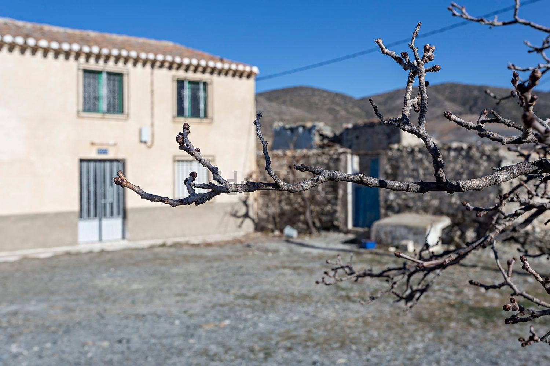 Imagen Alrededores de terreno en  Era Alta s/n, Vélez Rubio