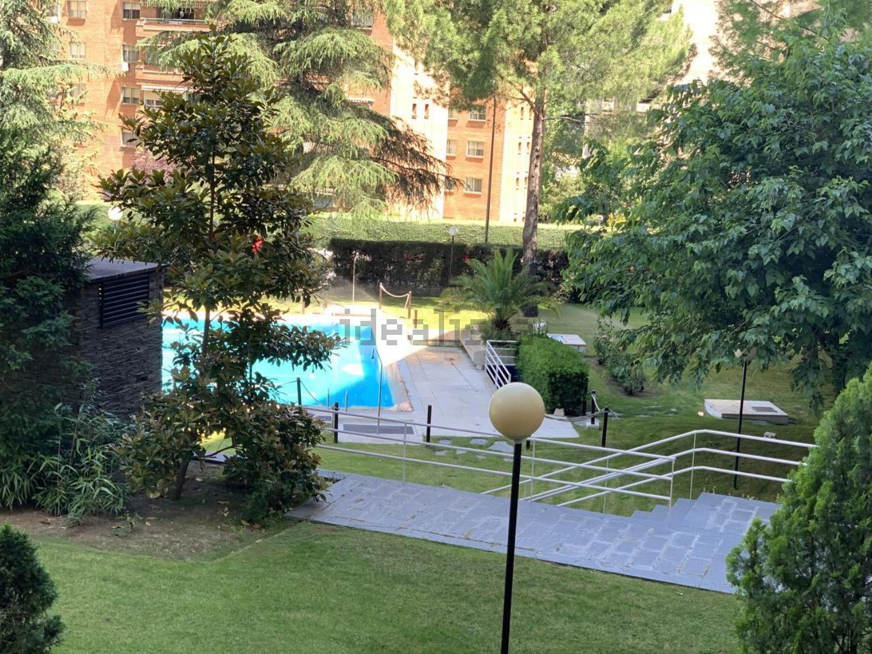 Imagen Jardín de piso en calle Julio Palacios, 17, La Paz, Madrid