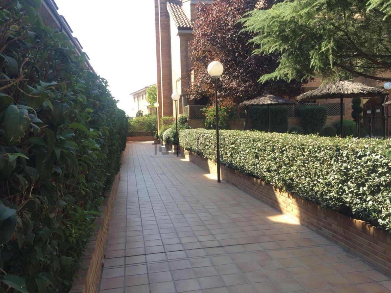 Imagen Terraza de dúplex en calle Gorrión, Sevilla la Nueva
