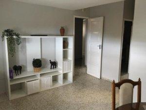 Maisons Et Appartements Bon Etat A Louer A Guimar Santa Cruz De