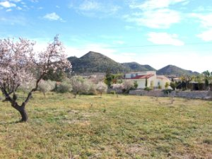 Property For Sale In Hondon De Los Frailes Alicante Houses And