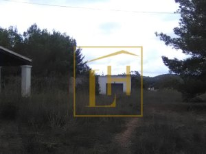Hauskauf Formentera immobilien in ibiza balears illes kaufen häuser und wohnungen