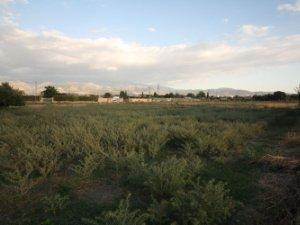 Terrenos En Churriana De La Vega Granada Idealista