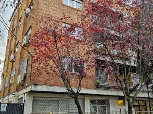 Long Term Rentals In Ciudad Jardin Madrid Houses And Flats From